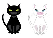 Black and white cats Stock Image