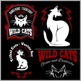 Black and white cats - vector set. Vector template for logo and tattoo. Vector illustration  on black Stock Photo