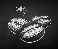 Black and white chalk sketch of coffee beans stock illustration