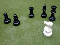 Black and white checkmate Royalty Free Stock Photo