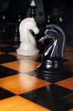 Black and white chess horses Stock Images