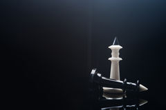 Black and white chess kings Stock Images