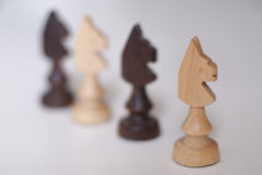 Black and white chess knights Royalty Free Stock Image