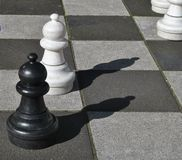 Black and white chess pawns Royalty Free Stock Image