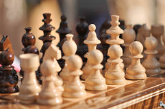 Black and white chess pieces on a chessboard, closeup. Set of chess figures on the playing board Stock Images