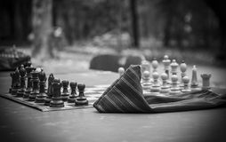 The Game of Chess Royalty Free Stock Photo