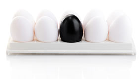 Black and white chicken eggs Royalty Free Stock Photo
