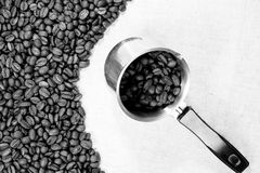 Black and white coffee beans Stock Images