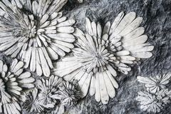 Stone carved marble flower Stock Photo