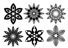 Black white flowers Royalty Free Stock Images