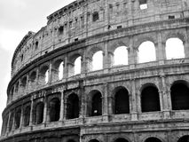 Black and white colosseum. In rome, italy Royalty Free Stock Photos