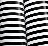 Black and white column stripes Stock Photography