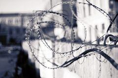 Black and white conceptual image of a barbed wire royalty free stock photo