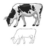 Black And White Cow graze. Cow in lines. Cow on white background. Vector. Illustration royalty free illustration