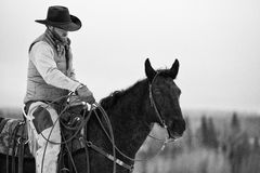 Black and white of cowboy with lasso. Cowboy preparing his lasso while in saddle Stock Photo