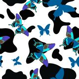 Black and white cowhide combined with blue butterflies, seamless pattern. Vector background stock illustration