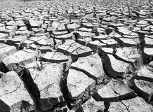 Black and white cracked earth textured Royalty Free Stock Photo