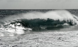 Black and White Crashing Waves Royalty Free Stock Image