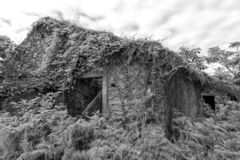 Black and White Creepy House royalty free stock images