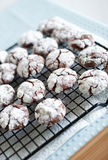 Black and white crinkle cookies Royalty Free Stock Photography