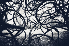 Black and white curved rods background Stock Images
