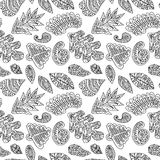 Black and white cute pattern with hand drawn leafs elem Royalty Free Stock Photography