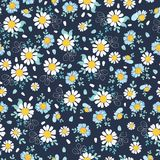 Black white daisies ditsy seamless pattern design. Great for summer vintage fabric, scrapbooking, wallpaper, giftwrap. Suraface pattern design Stock Images