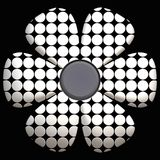 Black and white daisy Stock Photo