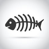 Black and white dead fish. A black and white dead fish Stock Images