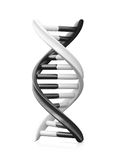 Black and White Dna Stock Photography