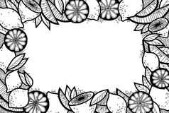 Black and White Doodle Background of Lemons, Lemon Slices and Leaves Stock Images