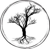 Black and white drawing of deciduous tree. Black silhouette on a white background. Royalty Free Stock Photos
