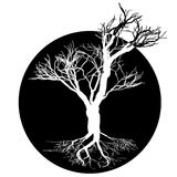 Black and white drawing of deciduous tree. Black silhouette on a white background. Large krone root system. Stock Photo