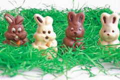 Black and white easter bunnies. On grass Royalty Free Stock Image