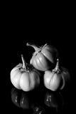 Black and white eggplant vegetable Royalty Free Stock Photo