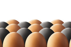 Black and white eggs Stock Images