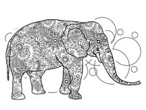 Black and white elephant hand drawn doodle  animal paisley adult stress release coloring page zentangle  Stock Photos