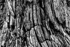 Black&white en bois de texture Image libre de droits