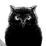 Black and white engrave evil vector owl bird Stock Image