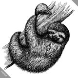 Black and white engrave isolated sloth vector illustration Stock Images