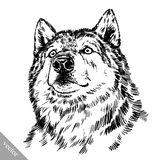 Black and white engrave  wolf Royalty Free Stock Image