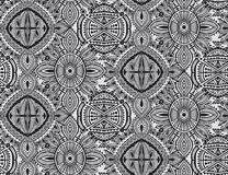 Black and white ethnic seamless pattern with hand drawn elements Stock Image