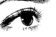 Black and white eye of a young woman, photographed close-up. Of an eyeball and eyelashes royalty free stock photography