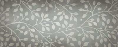 Black and white fancy ivy or vine background, gray hand drawn nature illustration stock photos