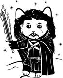Cat warrior with fire sword. Black and white fantasy illustration with cartoon kitten warrior in black cloak Royalty Free Stock Images