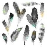 Black And White Feathers Set Stock Photos