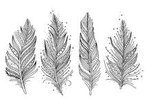 Black and white feathers. Set isolated, doodle art, vector illustration royalty free illustration