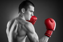 Black and white fighter with red gloves. Royalty Free Stock Images
