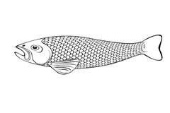 Black and white   fish illustration Stock Image