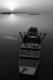 Black-and-white fisher. A fisher at the sunset stock image